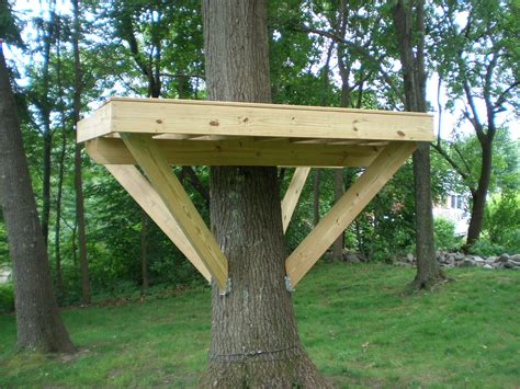 Small tree house platform images amp pictures becuo
