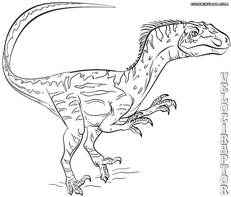 velociraptor coloring pages coloring pages to