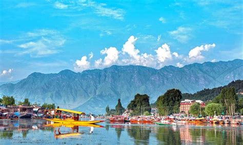 amazing dal lake  srinagar city jewel   crown