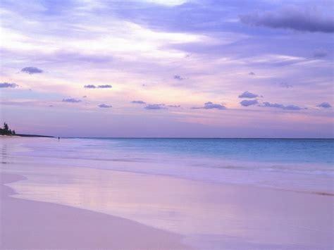 pink sand beach the pink sands beach on bahamas island