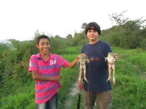 chicos con enormes chotas bullfrogs ranas enormes aguirrekids