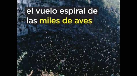 el murmullo de las bellezas naturales de m 233 xico el s 243 tano de las golondrinas youtube