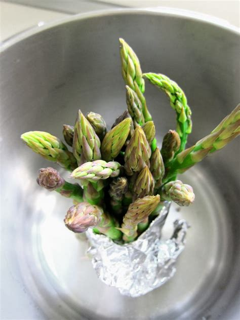 pressure cooker tip stand up for asparagus hip