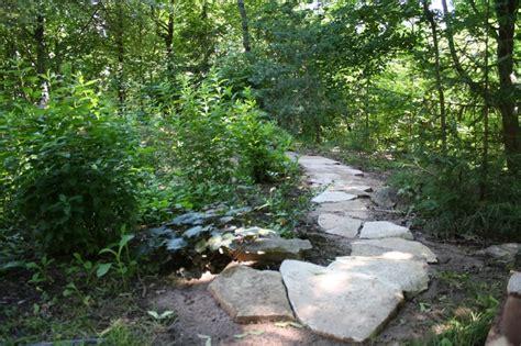 woodland landscape landscaping ideas for cabin pinterest