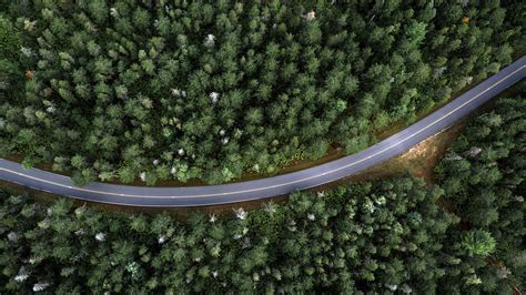 aerial view  country road  forest usa windows