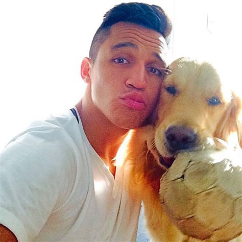 alexis sanchez dogs instagram photo alexis sanchez s dog shares arsenal star s football