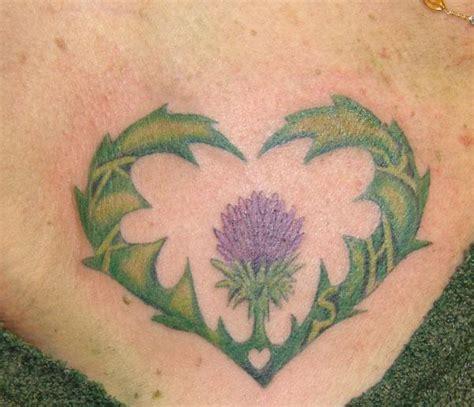rose and thistle tattoo scottish thistles tattoos designs scottish thistles