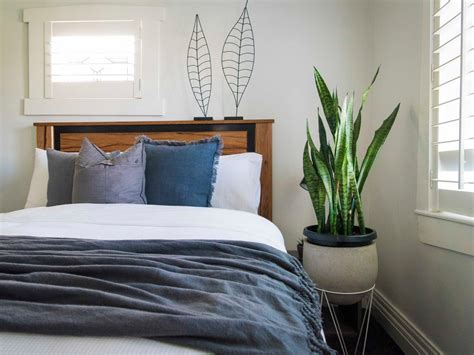 in your bedroom leaf the best plants to grow in your bedroom