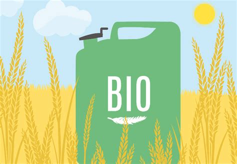 what is the energy what is biofuel ovo energy