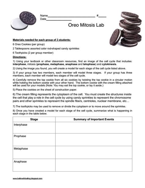 lab bench mitosis 25 best ideas about mitosis on pinterest cell biology