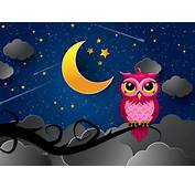 Silent Owl Night Wallpaper For Android IPhone And IPad
