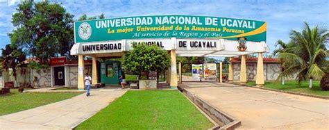 convocatoria docente universidad nacional de ucayali 2016 focam financiar 225 proyectos de estudiantes de pre y