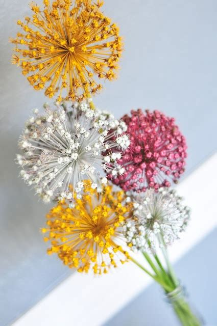 spray painting flowers 1000 ideas about spray paint flowers on