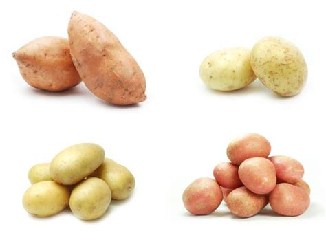 carbohydrates l g food fight sweet potatoes vs white potatoes healthy