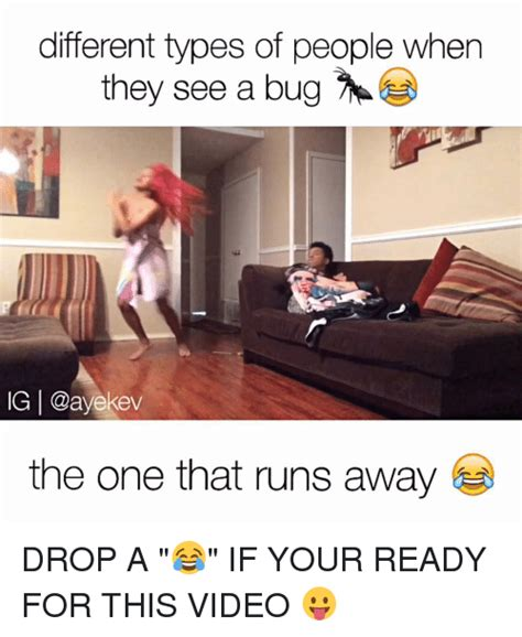 Different Types Of Memes - 25 best memes about bugs bugs memes
