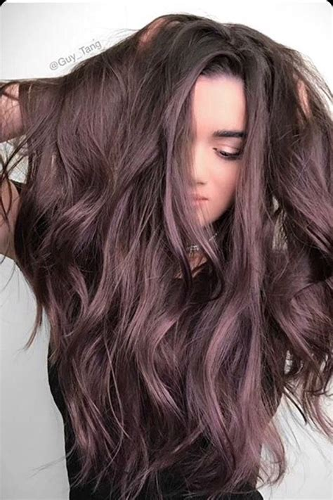 chocolate plum hair color the 25 best purple brown hair ideas on pinterest plum