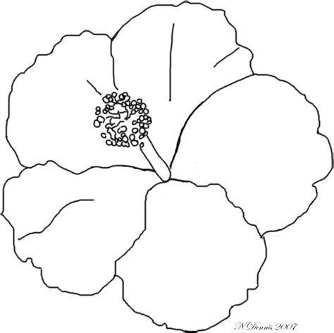 luau flower coloring page coloring pages hawaiian flower coloring pages hawaiian