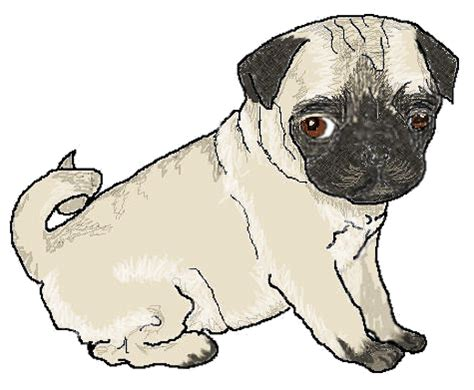 pug clip pug puppy animals dogs p pug pug puppy png html