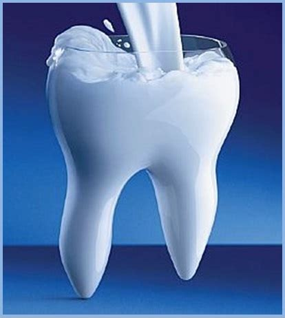 Teeth Stick Calcium Bone S food choices that help to prevent tooth decay dr nechupadam dental clinic
