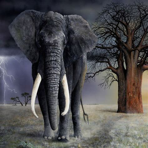 elephant art glossy poster picture photo tusk trunk ears