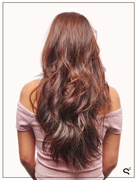 feather cut for long hair back view www imgkid com the feather cut for long hair back view www imgkid com the