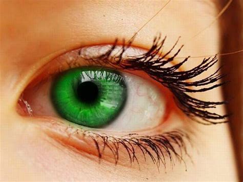 imagenes de ojos verdes para facebook las fotos mas alucinantes ojos verdes