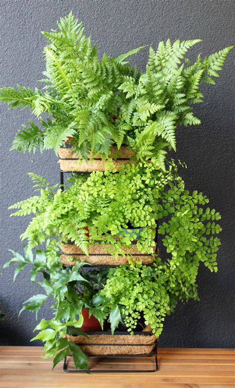 Mini Garden Vertical Mini Vertical Garden Kmart Styling
