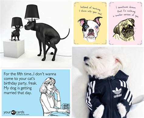 design milk dog dog milk best of june 2012 design milk