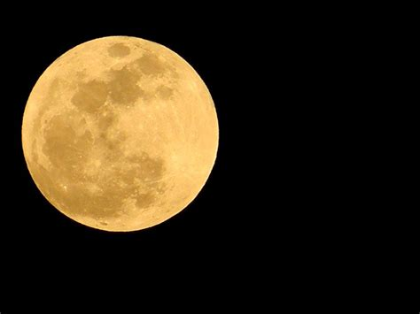 what is the color of the moon early moon in color photograph by warren thompson
