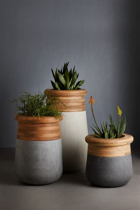 gorgeous indoor planters   fall  love