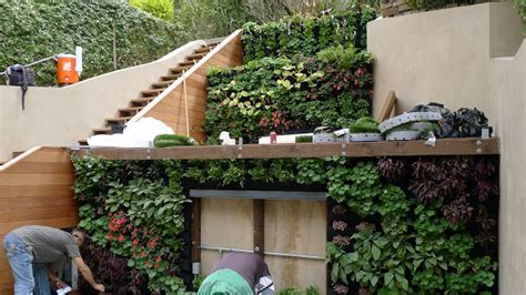 home vertical garden plants on walls vertical garden systems terraced vertical