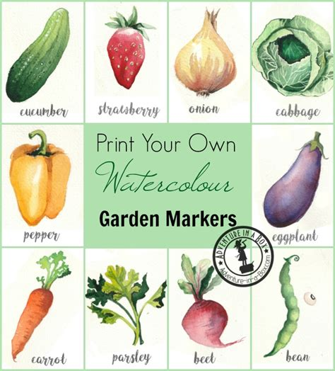 printable vegetable labels free printable watercolour garden markers adventure in a box