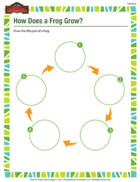 How Does Answer Garden Work Collections Of Free Science Worksheets For 2nd Grade