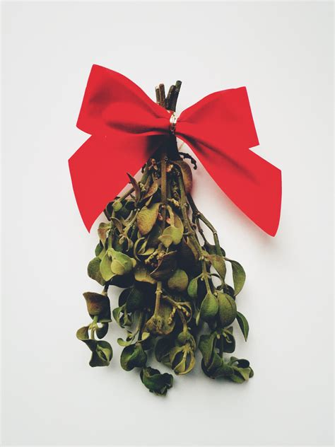 buy mistletoe check note to self