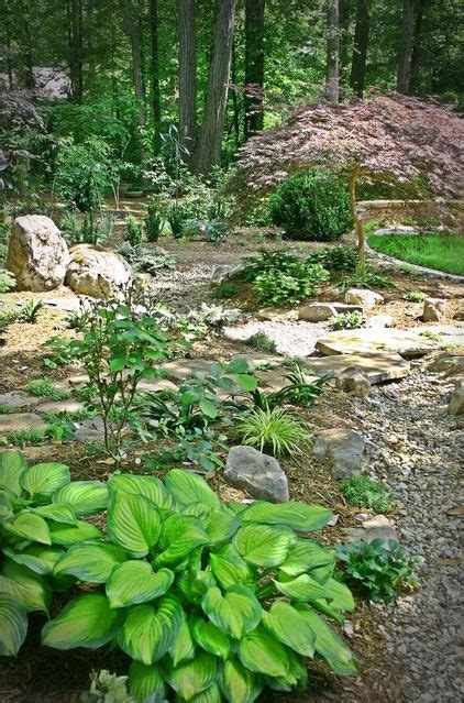 wooded backyard ideas landscaping landscaping ideas wooded backyard