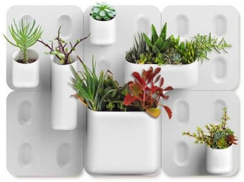 Urbio Wall Planter by Urbio Big Happy Family Wall Organizer Garden