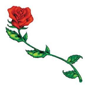 rose tige longue tattooforaweek tatouages temporaires