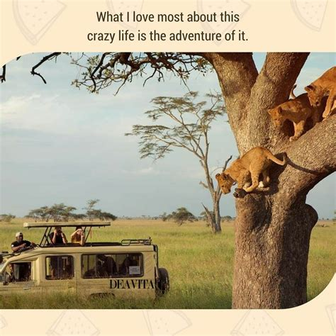 What Is It About This by Best Inspirational Adventure Quotes With Unique Photos