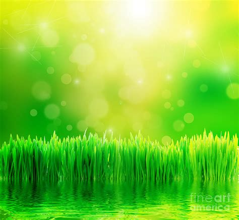 Inside Home Design Hd by Green Nature Background With Fresh Grass Photograph By