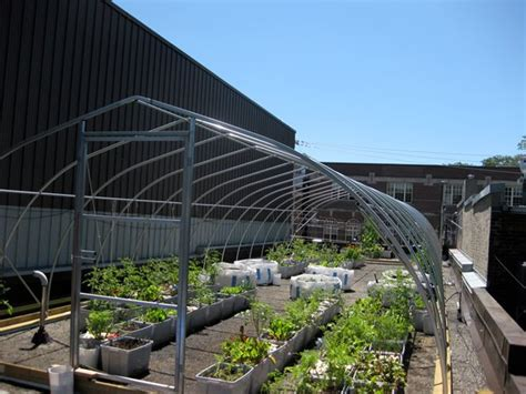 vegetable roof garden vegetable roof garden gallery garden design