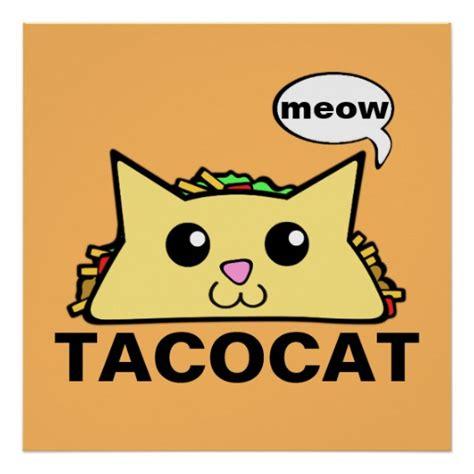 taco poster zazzle taco cat poster zazzle