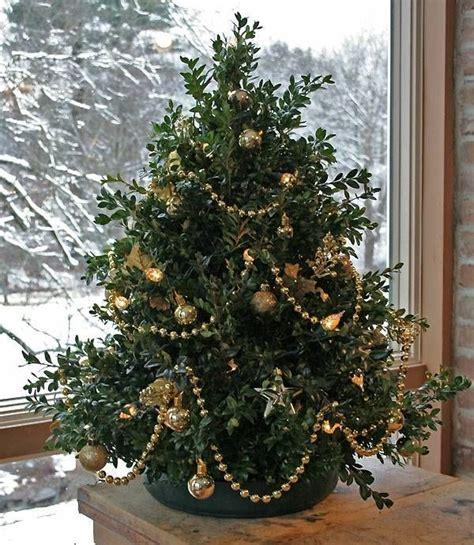 19 besten weihnachtsbaum inspiration bilder auf pinterest