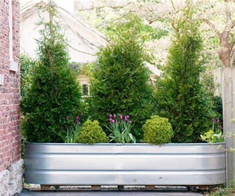gartengestaltung vorschläge bepflanzung zaun idee