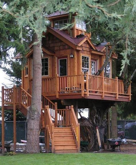 awesome tree houses amazing tree house on the world house number three