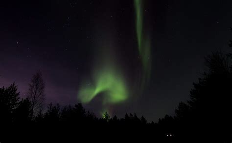 finland northern lights tour borealis tours finland northern lights wilderness tour