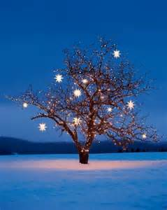 martha stewart tree lights crafts projects how to and