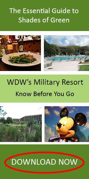 the essential guide to shades of green 2018 your guide to walt disney world s resort books 17 best ideas about disney value resorts on