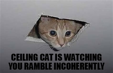 Ceiling Cat Meme - memes general discussion flight rising