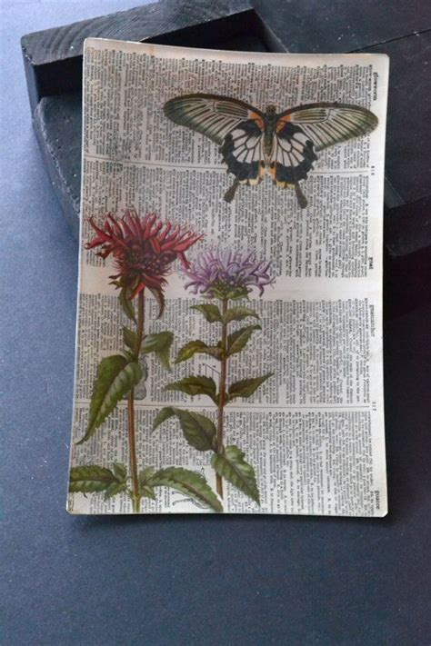 Decoupage Tray Ideas - bibliophile decoupage large tray papercut butterfly and