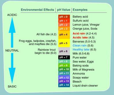 Neutral Colors Definition by Papierki Lakmusowe Zakres Ph 0 14 Haccp Ghp Gmp Iso